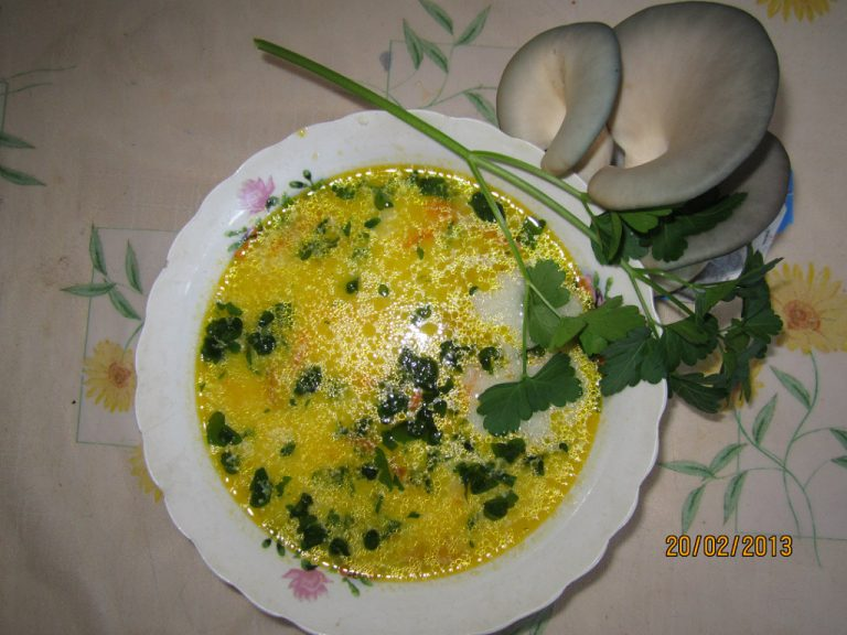 Пёстрый суп из вешенки