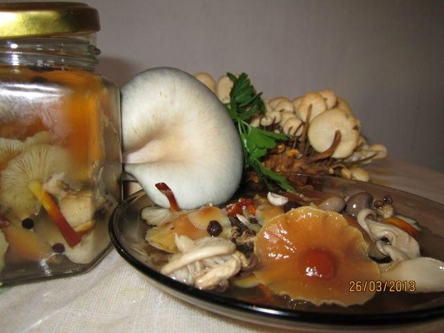 Рецепт маринованых грибов вешенка, фламмулина